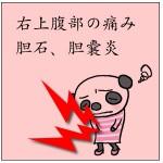 胆石によく使われる漢方薬