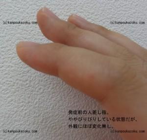DSC04591s-thumb-390x372-602