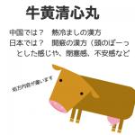 同じ名前でも日本と中国とでは違う!日本の牛黄清心丸は頭が冴えないときに使うとスッキリする