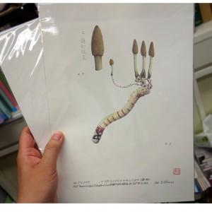 清水大典先生の点画のレプリカ