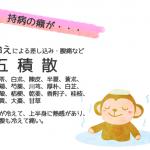 「持病の癪」の原因は胆石や○○?!