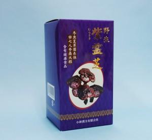 野生紫霊芝