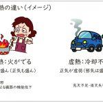 実熱と虚熱の違い(イメージ)