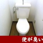 お父さんが出た後のトイレ。「便が臭い、オナラが臭い」で困っていませんか?