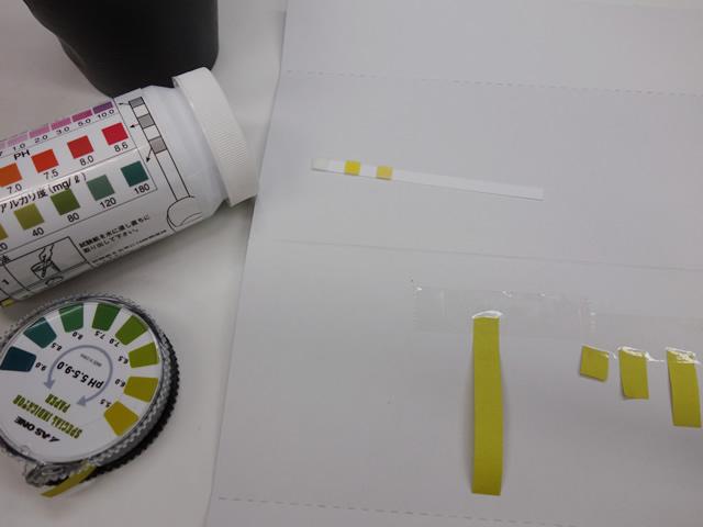 紙 ph 試験