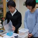 漢方実務実習2013年度第三期:漢方の実習をしました(店頭実習)